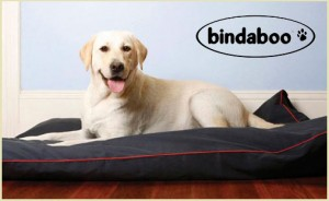 Bindaboo Dog Bed